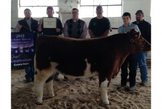 15-GrandChampionMarketSteer-AshtabulaCountyFair-AveryMarch