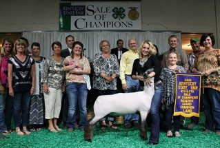 15-ReserveGrandChampionMarketLamb-KentuckyStateFair-Allison-Breeze