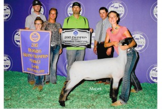 15-ReserveGrandChampionMarketLamb-MichiganLivestockExpo-MadalynStewart