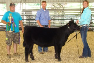15-SupremeChampionHeifer-FayetteCountyFair-JessicaButler