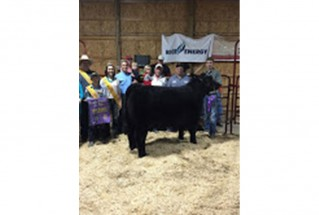 15-grandchampion-belmontcountyfair-dylan-pryor