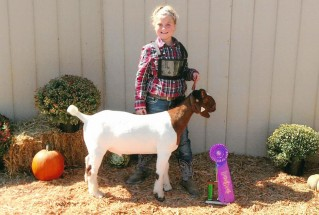 15-grandchampmarketgoat-ashlandcountyfair-EastynRohr