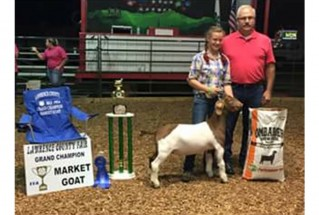 15-grandchampmarketgoat-lawrencecountyfair-Haley-Pancake