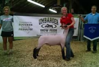 15-grandchampmarketlamb-galliacountyfair-Kaetlyn-McCalla