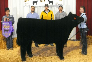 15-grandchampmarketsteer-ashlandcountyfair-Carrie-Hickey