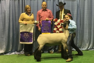 16-Grand-Champion-Market-Lamb-National-Western-Stock-Show-Bailee-Amstutz