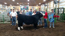 alayna-grand-champion-steer