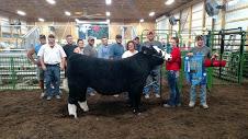 alayna-grand-champion-steer