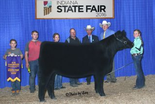 16-champheifer-indianastatefair-brookehayden