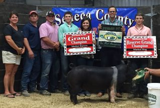 16-grandchampbarrow-senecacountyfair-danielprice