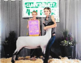 16-grandchampewe-clarkcounty4h-kamititus
