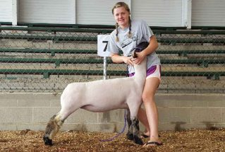 16-grandchampewe-highlandcountyfair-paigeteeters