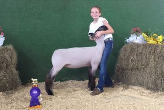 16-grandchampewe-polkcountyfair-paytonstewart