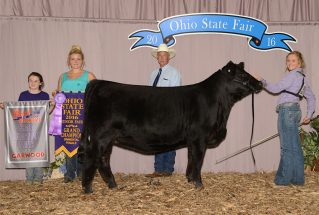 16-grandchampheifer-ohiostatefair-meghanreed