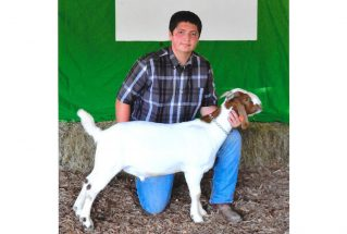 16-grandchampmarketgoat-clarkcounty4h-johnnynoggle