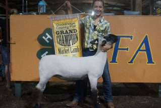 16-grandchampmarketlamb-doddridgecountyfair-abby-mcdonough