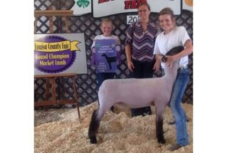 16-grandchampmarketlamb-louisacountyfair-hayleyanderson