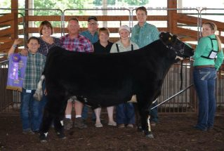 16-grandchampmarketsteer-lakecounty-addieshaffer