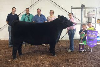 16-grandchampsteer-rosscountyfair-ellieday