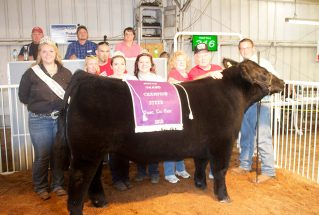 16-grandchampsteer-tuscarawascountyfair-jefferymurphy