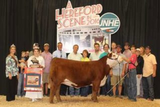 16-reservegrandchampheifer-jnheherefordjrnational-rhett-hereford
