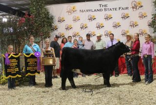16-supremechampheifer-marylandstatefair-kaylieshelton