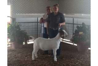 grandchamp-lucascountyfair-sydneywinslow