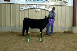 16-grandchamp-hillsdalecountyfair-cordellprice