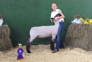 16-grandchamp-polkcountyfair-paytonstewart