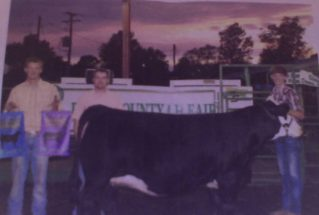 16-grandchamp-poseycounty4hshow-nickwiley