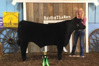 16-grandchamp-williamscountyfair-carleymuehfeld