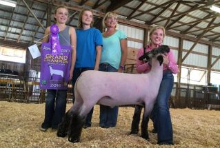 16-grandchampion-ashlandcountyfair-kirstenaugustine