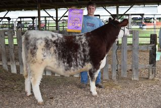 16-grandchampion-clarkcounty4h-coltinbrandenburg