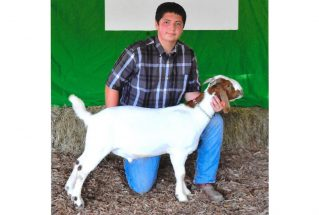 16-grandchampion-clarkcounty4h-johnnynoggle