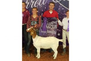 16-grandchampion-garrettcountyfair-emilydurst