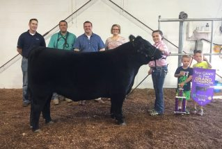 16-grandchampion-rosscountyfair-ellieday