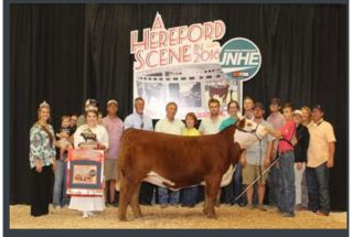 16-reservegrandchamp-jnheherefordjrnational-rhettlowderman