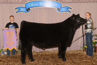 16-reservegrandchampion-ohiostatefair-addisonjones