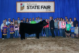 reserve-champion-indiana-state-fair