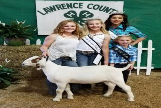rileygreentreegrandchampionmarketgoatlawrencecountyfair2017
