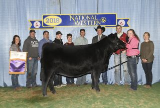 alexandria-raab-junior-champion-balancer-h-nwss