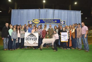 bailee-amstutz-reserve-grand-market-lamb-nwss-group-pic