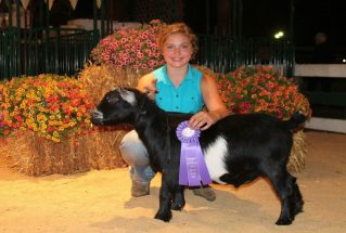 makenahrohrgrandchampionwetherstarkcountyfair2017