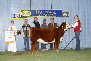morgan-lowderman-jr-reserve-horned-hereford-h-nwss