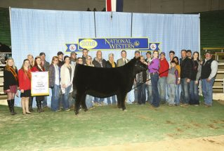 olivia-caldwell-junior-reserve-angus-h-nwss