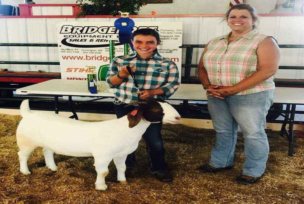 2017 Goat Winners - Umbarger Show Feeds