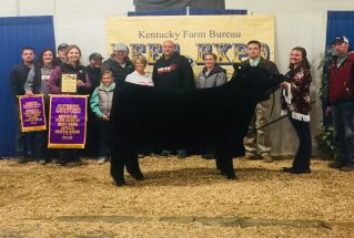 rsz_cheyenne_kiser_supreme_champion_ky_owned_heifer_ky_beef_expo