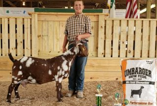 2018 Goat Winners - Umbarger Show Feeds