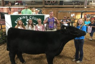 McKennaBroughton_GC_MS_WyomingCo4-HFair_977x658