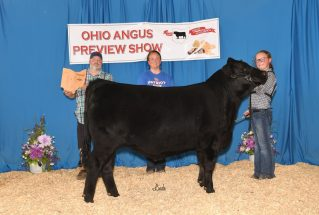 HannahMillikan_RGC_MS_OH_Jr_Angus_Preview_Show_977x658